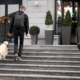 guide dog helps the owner climb the stairs, enter the building